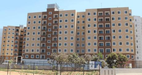 1290 sqft, 3 bhk Apartment in Brigade Orchards Devanahalli, Bangalore at Rs. 19000