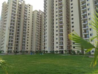 1575 sqft, 3 bhk Apartment in MGH MGH Mulberry County  Sector 70, Faridabad at Rs. 52.0000 Lacs