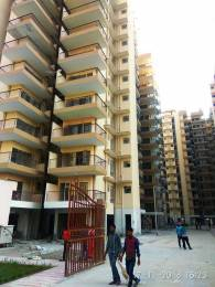 504 sqft, 2 bhk Apartment in Op Floridaa Sector 82, Faridabad at Rs. 23.9500 Lacs