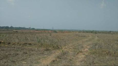 5998 sqft, Plot in Builder Laliteswar Jajpur Singhpur Road, Jajpur at Rs. 55.0000 Lacs