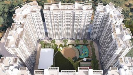 1000 sqft, 2 bhk Apartment in Raunak City Kalyan West, Mumbai at Rs. 12000