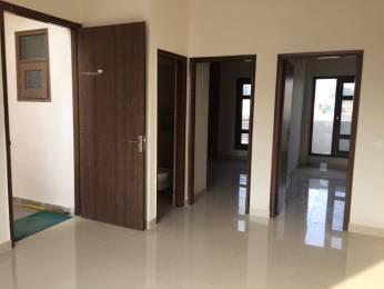 700 sqft, 1 bhk Apartment in Paradigm The Hermitage Park Dhakoli, Zirakpur at Rs. 10000