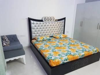 1600 sqft, 2 bhk Apartment in Bee Gee Aastha City Peer Muchalla, Zirakpur at Rs. 14000