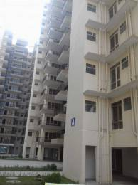 604 sqft, 2 bhk Apartment in Op Floridaa Sector 82, Faridabad at Rs. 26.0000 Lacs