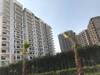 1107 sqft, 2 bhk Apartment in Central Park The Room Sector 48, Gurgaon at Rs. 50000