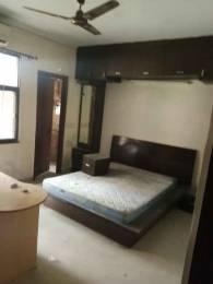 1250 sqft, 1 bhk Apartment in AWHO Sispal Vihar Sector 49, Gurgaon at Rs. 25000