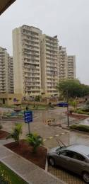 1753 sqft, 2 bhk Apartment in Spaze Privy Sector 72, Gurgaon at Rs. 28000