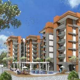 650 sqft, 3 bhk Apartment in Builder Project Paschim Vihar, Delhi at Rs. 55.0000 Lacs