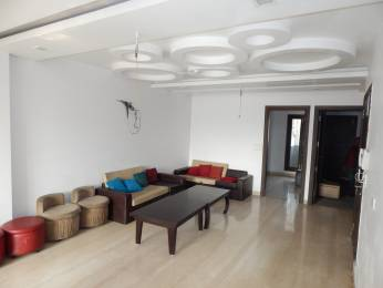 1050 sqft, 3 bhk Apartment in Builder Project Pitampura, Delhi at Rs. 78.0000 Lacs