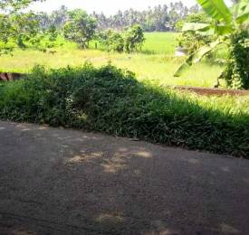 1500 sqft, Plot in Builder Project Kaloor, Kochi at Rs. 7.5000 Lacs