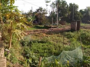 2600 sqft, Plot in Builder Project Sarsuna, Kolkata at Rs. 22.0000 Lacs