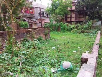 1576 sqft, Plot in Builder Project Shibpur, Kolkata at Rs. 40.0000 Lacs