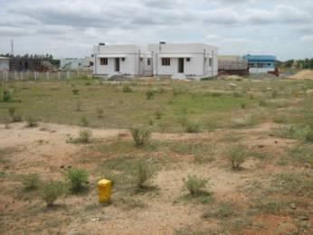 6000 sqft, Plot in Builder Project Jawaharlal Housing Society, Solapur at Rs. 30.0000 Lacs