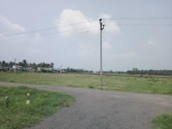 1290 sqft, Plot in Builder Project Othakalmandapam, Coimbatore at Rs. 5.7000 Lacs