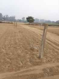 900 sqft, Plot in Builder Project Chhawla, Delhi at Rs. 12.0000 Lacs