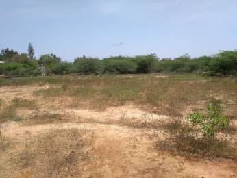 1656 sqft, Plot in Builder Project Nellore, Nellore at Rs. 23.0000 Lacs