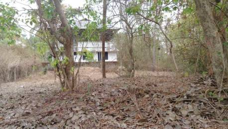 4500 sqft, Plot in Builder Project Ollur, Thrissur at Rs. 40.0000 Lacs