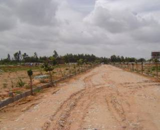 1200 sqft, Plot in Builder Project Bommanahalli, Bangalore at Rs. 30.0000 Lacs