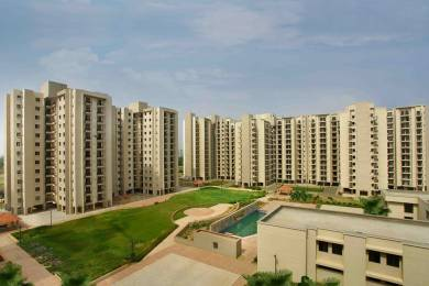 890 sqft, 2 bhk Apartment in Builder Project Sector 22 Dwarka, Delhi at Rs. 39.1600 Lacs