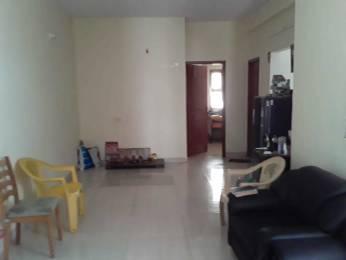 940 sqft, 2 bhk Apartment in Builder Project Anna Nagar, Chennai at Rs. 79.0000 Lacs