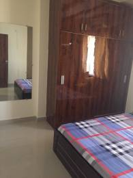 800 sqft, 2 bhk Apartment in Builder Project Gulmohar Colony, Bhopal at Rs. 31.0000 Lacs