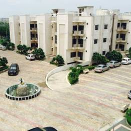 1200 sqft, 2 bhk Apartment in Builder Project Sunrakh Bangar, Mathura at Rs. 18000