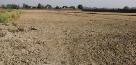 10800 sqft, Plot in Builder Project Tarna, Varanasi at Rs. 1.3600 Cr