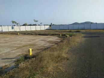 1763 sqft, Plot in Builder Project tambaram east, Chennai at Rs. 39.6675 Lacs