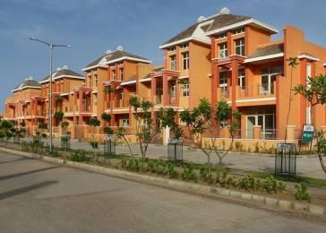 1260 sqft, 2 bhk Apartment in Builder Project Janaksinghpura, Neemrana at Rs. 10000