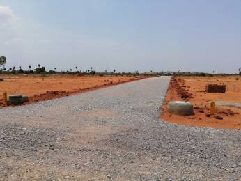 2700 sqft, Plot in Builder Project Amangal, Hyderabad at Rs. 15.0000 Lacs