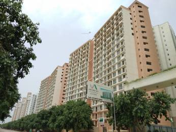 1040 sqft, 2 bhk BuilderFloor in Builder Project Sector 143, Noida at Rs. 55.0000 Lacs