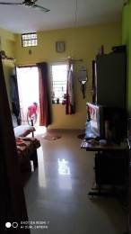 1100 sqft, 3 bhk IndependentHouse in Builder Project Palasia, Indore at Rs. 25.0000 Lacs