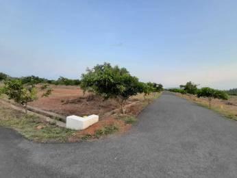 3600 sqft, Plot in Builder Project Madhurawada, Visakhapatnam at Rs. 30.0000 Lacs