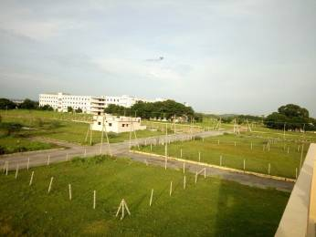 1485 sqft, Plot in Builder Project muthangi, Hyderabad at Rs. 23.0000 Lacs
