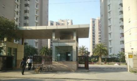 1413 sqft, 1 bhk Apartment in ABA Olive County Sector 5 Vasundhara, Ghaziabad at Rs. 18000