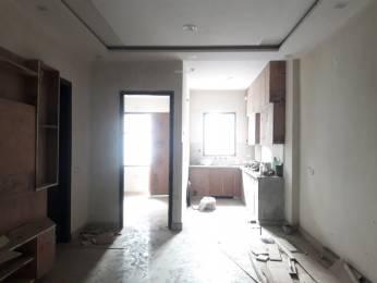 1100 sqft, 3 bhk BuilderFloor in Builder Project Sector 21 Rohini, Delhi at Rs. 80.0000 Lacs