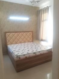 1050 sqft, 2 bhk Apartment in Amolik Sankalp Sector 85, Faridabad at Rs. 26.3000 Lacs