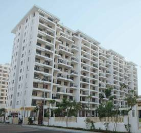 1150 sqft, 1 bhk Apartment in Kolte Patil IVY Estate Wagholi, Pune at Rs. 59.0000 Lacs