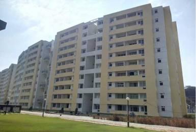 1712 sqft, 3 bhk Apartment in Builder Project Pavendar Salai, Chennai at Rs. 68.4800 Lacs