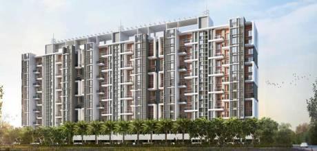 989 sqft, 2 bhk Apartment in Gaikwad Miro Tathawade, Pune at Rs. 51.5000 Lacs