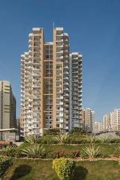1310 sqft, 2 bhk Apartment in Express Zenith Sector 77, Noida at Rs. 73.0000 Lacs