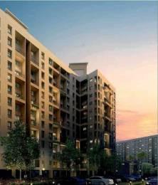 1003 sqft, 1 bhk Apartment in Kalpataru Serenity Manjari, Pune at Rs. 47.8000 Lacs