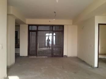 1661 sqft, 3 bhk Apartment in Builder Project Neharpar Faridabad, Faridabad at Rs. 55.0000 Lacs