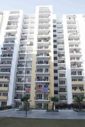 1350 sqft, 1 bhk Apartment in Panchsheel Greens 2 Sector 16B Noida Extension, Greater Noida at Rs. 44.0000 Lacs