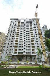 1590 sqft, 3 bhk Apartment in Salarpuria Sattva Salarpuria Sattva Greenage Bommanahalli, Bangalore at Rs. 1.6000 Cr