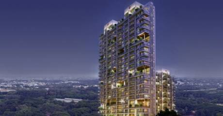 2495 sqft, 3 bhk Apartment in Mantri Blossom Ashok Nagar, Bangalore at Rs. 3.5800 Cr