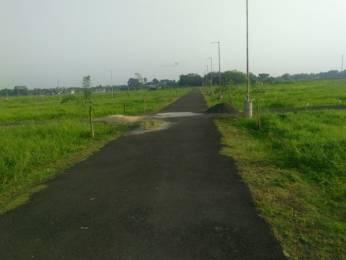 1440 sqft, Plot in Cosmos Green City Barasat, Kolkata at Rs. 6.5000 Lacs