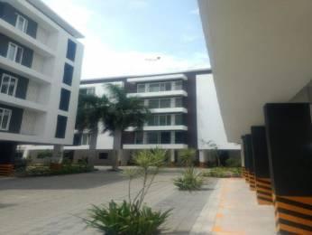 2324 sqft, 3 bhk Apartment in Builder Project Alandur, Chennai at Rs. 1.8000 Cr