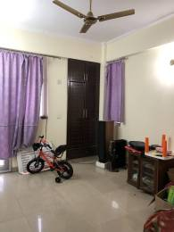 1620 sqft, 3 bhk Apartment in Amrapali Eden Park Sector 50, Noida at Rs. 23000