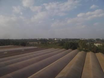 1312 sqft, 3 bhk Apartment in Pyramid Carnations Yelahanka, Bangalore at Rs. 53.1360 Lacs